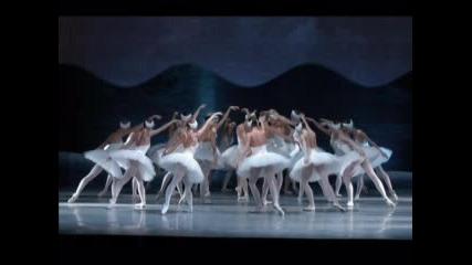 Pyotr Ilyich Tchaikovsky - Swan Lake