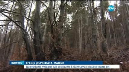 Държавата обявява война на горската мафия
