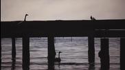 На самотния бряг.. (лиричен превод*) .. Харис Алексиу
