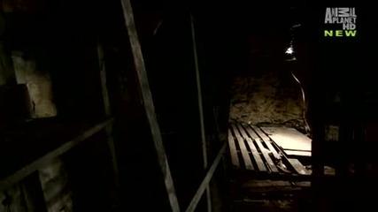 The Haunted Сезон 1 Епизод 1