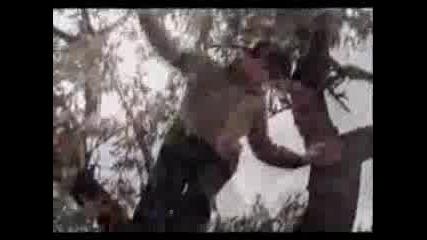 Enigma - Return To Innocence (ПРЕВОД)