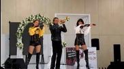 Ятор-шоу 2010г. элитная выставка Крокус экспо