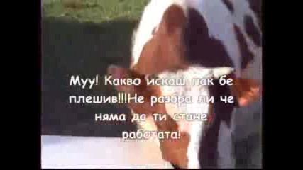 Madteam - Любовта Не Може Да Се Купи
