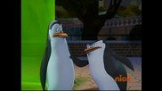 The Penguins of Madagascar - Jiggles