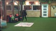 Кичка тича в двора