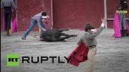 Spain: Madrid withdraws municipal funding for bull-fighting school