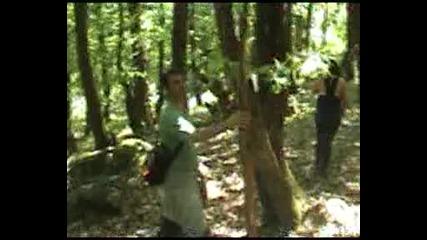 загубени в странджа планина - lost in strandja wood