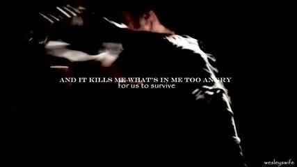 Stefan + Elena | Too many words