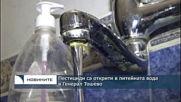 Пестициди са открити в питейната вода в Генерал Тошево