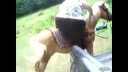 Тая е по тежка и от коня!