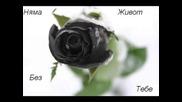 Maksim & Ioneta - Nqma Jivot Bez Tebe