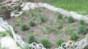 Produce Lipite Rousse