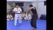 Karate vs Kung Fu