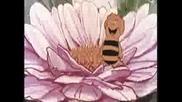 Maya the bee theme song