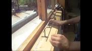 hornywood Fingerboard Nikola Stefanov