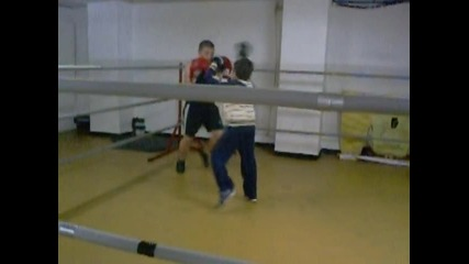 Marti Iva box 2