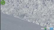 Заек камикадзе минава през лавина