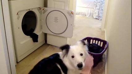 Най - умното куче на света 2 - Не е За Изпускане (гарантиран смях)