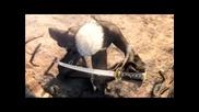Final Fantasy 7 - Forgotten