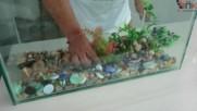 Да си направим аквариум