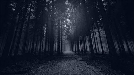 Insomnium - Mute Is My Sorrow