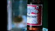 Реклама - На Тази Мишка Май И Се Пие Бира