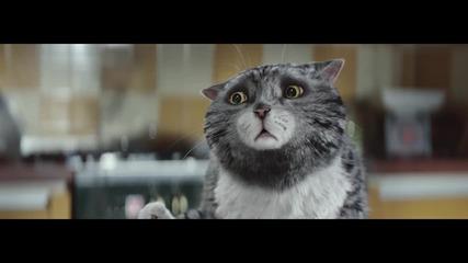 Най-сладкото коледно видео!!! Бедствията на Мог на Коледа!