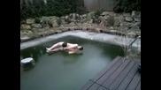 Ето какво е да се опиташ да скочиш в замръзнал басейн!