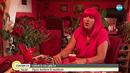 СИЛАТА НА ЦВЕТА: Жената, чийто живот е белязан от червеното