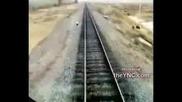 Влак прегазва крави