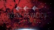 Jana Todorovic - Ozeni Pevacicu - Audio 2017