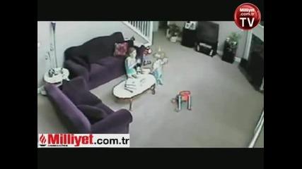 котка терорист горката жена