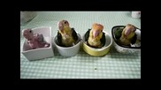 Бебе папагали