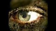 Slayer - Eyes Of The Insane