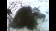 bodrovo