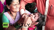 India: Thousands swallow live fish in bid to cure respiratory problems