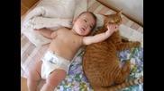 Коте и бебе 2