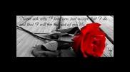 Ruvejd Mujanovic Rule - Svaki dan bez tebe 2012