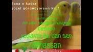 Dj Yildirim - Hangi Can (Remix)