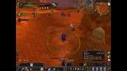 Ninelifes 70 Lvl Druid Part 2