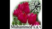 Hakan Altun - Asik Oldum Muhammede [iftihar Abidemiz 2oo8].flv