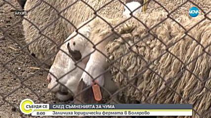 СЛЕД СЪМНЕНИЯТА ЗА ЧУМА: Заличиха юридически ферма в Болярово