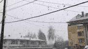 Силен снеговалеж над София - Strong snowfall over Sofia