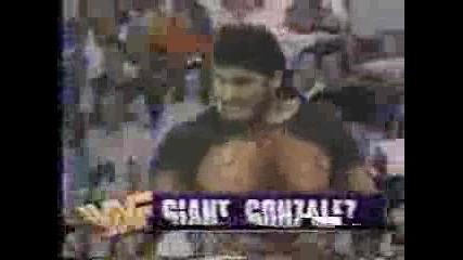 The Undertaker vs. The Giant Gonzalez (rest In Peace Match) - Wwf Summerslam 1993