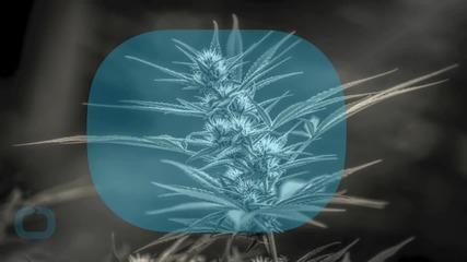 Delaware Governor Signs Bill Decriminalizing Marijuana Use