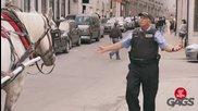 Полицай се опитва да глоби кон - Скрита камера