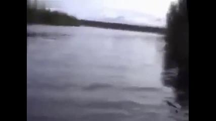 Яки рибарски изцепки