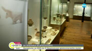 Археологическият музей представя най-интересните открития на 2020 г.