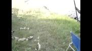 Ловя Риба На Поройския Язовир