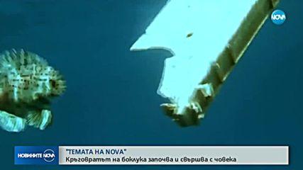 """В """"Темата на Nova"""" очаквайте: Кръговратът на боклука"""